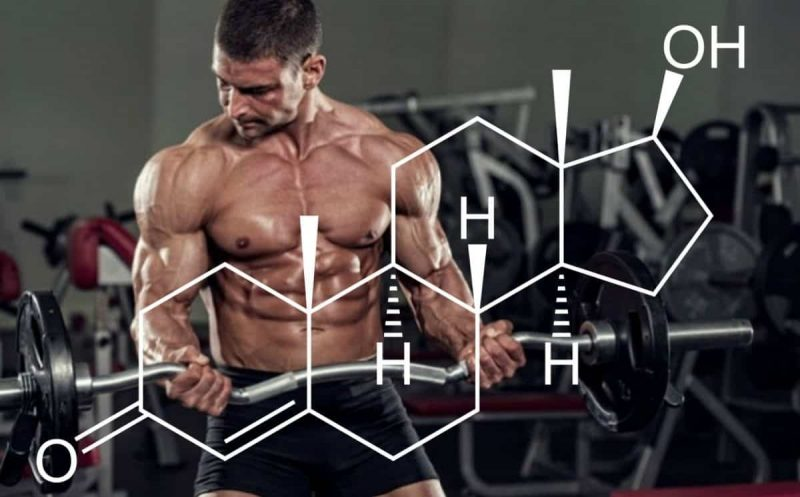 Testosterone Facts 1