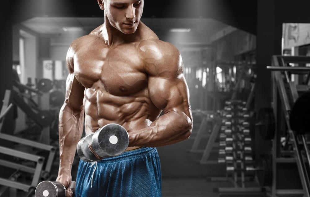 Vitamin D and Bodybuilding