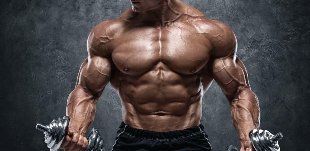 Bodybuilder lifting dumbells