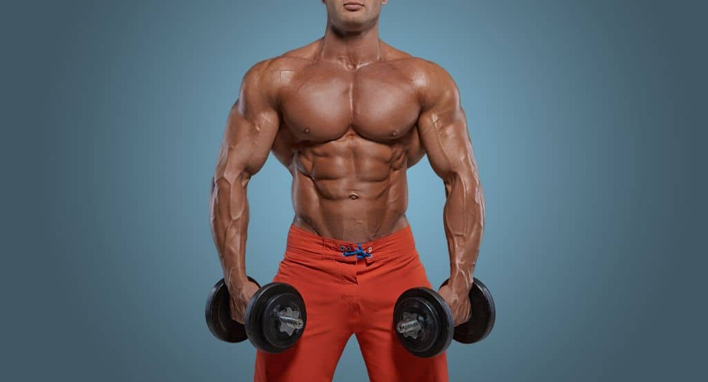 Bodybuilder with large muscles holding dumbbells
